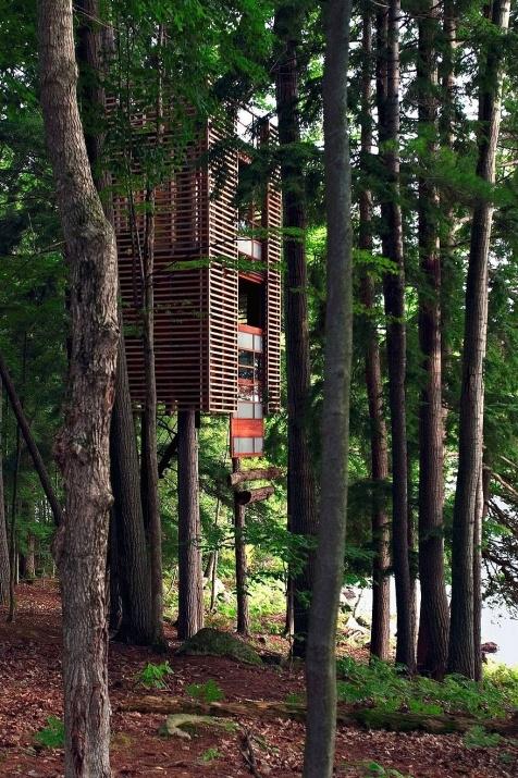 Birbirinden harika ağaç evler 3