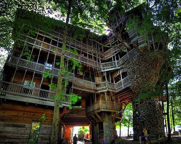 Birbirinden harika ağaç evler 4