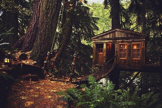 Birbirinden harika ağaç evler 6