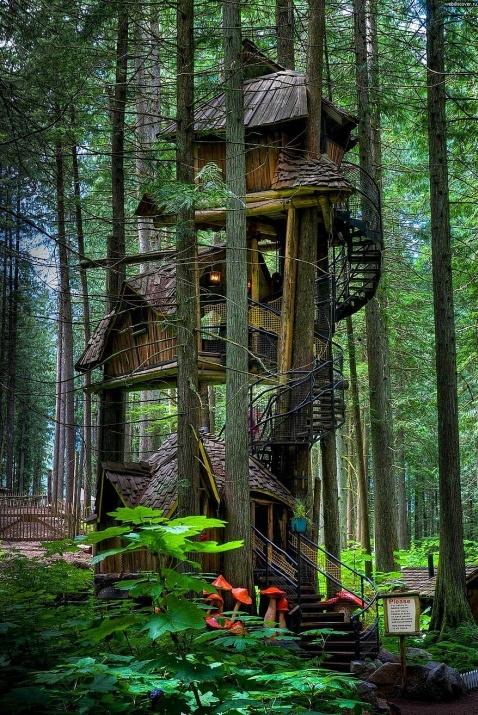 Birbirinden harika ağaç evler 7