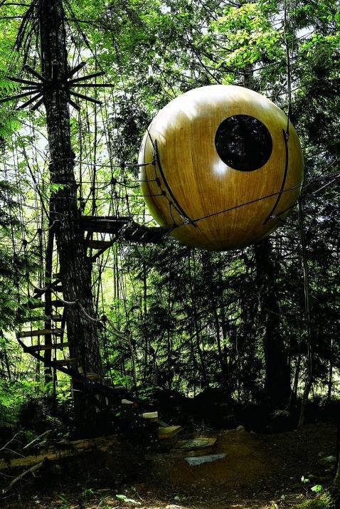 Birbirinden harika ağaç evler 9