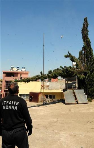 Adana'da kedi kurtarma operasyonu 11