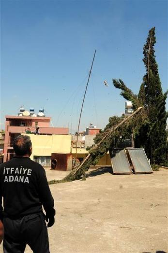 Adana'da kedi kurtarma operasyonu 12