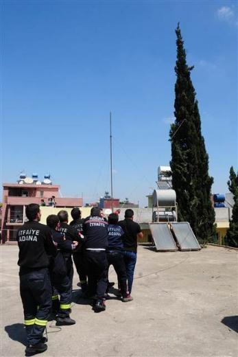 Adana'da kedi kurtarma operasyonu 2