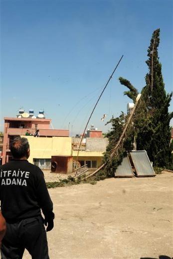 Adana'da kedi kurtarma operasyonu 3