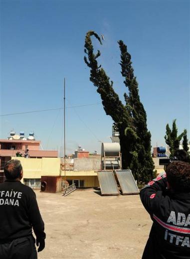 Adana'da kedi kurtarma operasyonu 5