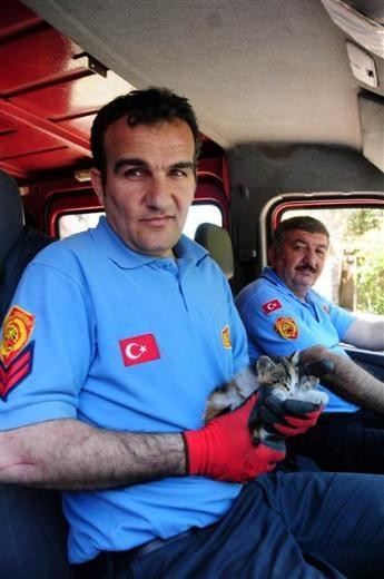 Adana'da kedi kurtarma operasyonu 8