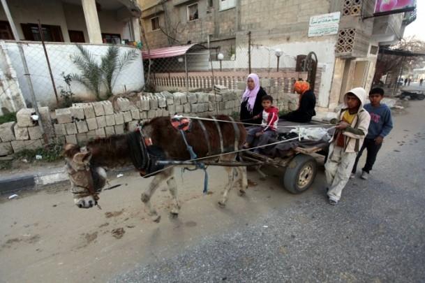 Gazze'deki Mülteciler 1