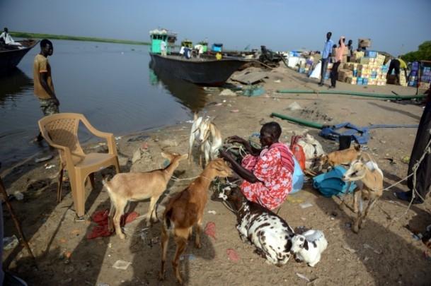 Güney Sudan'da İç Çatışmalar 8