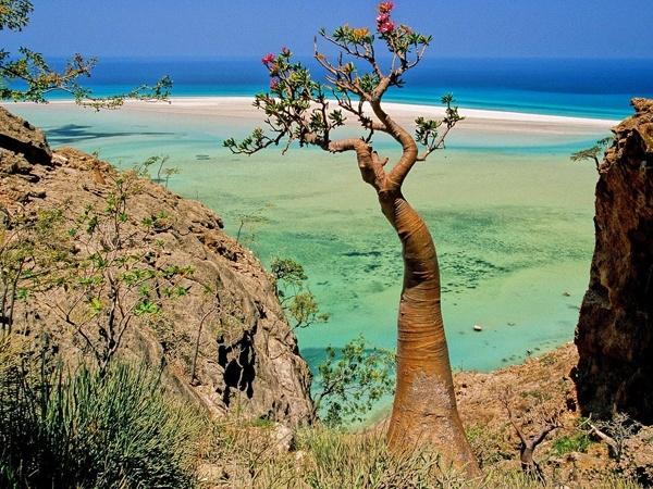 İşte dünyanın en gizemli adası 2