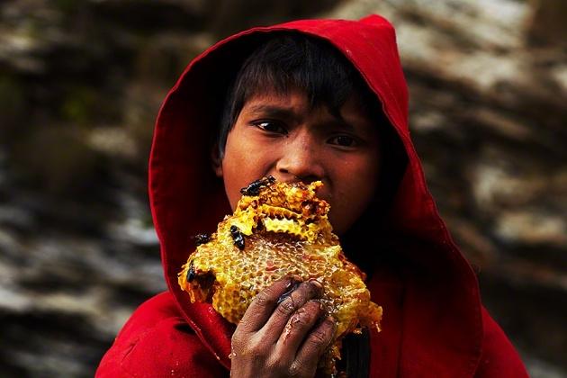 Nepal Yerlilerinin Arılarla Bal Savaşı 10