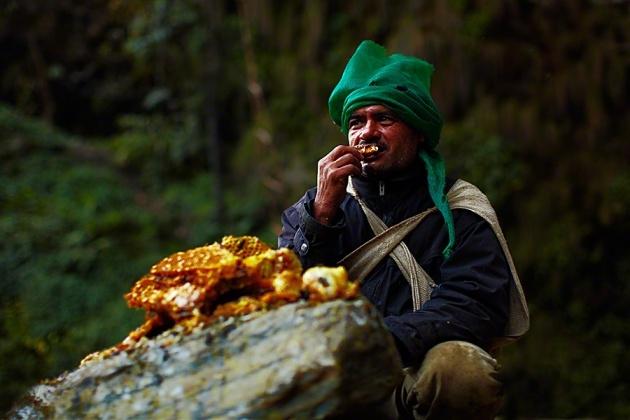 Nepal Yerlilerinin Arılarla Bal Savaşı 11