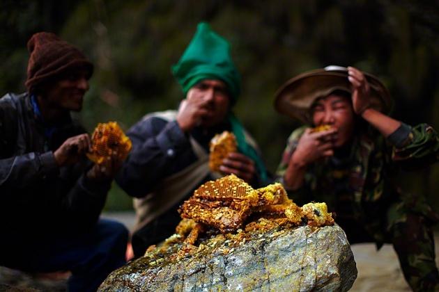 Nepal Yerlilerinin Arılarla Bal Savaşı 9