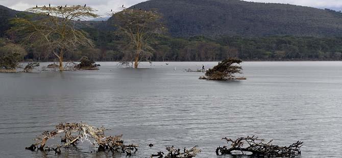 Büyüleyen göl: Lake Naivasha 14
