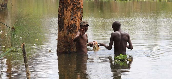 Büyüleyen göl: Lake Naivasha 9