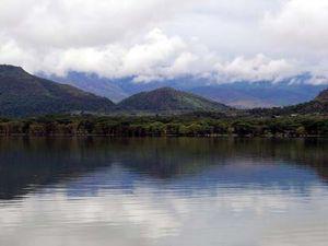 Büyüleyen göl: Lake Naivasha