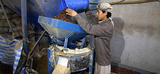 Yemen'de Ramazan öncesi kahve telaşı 3