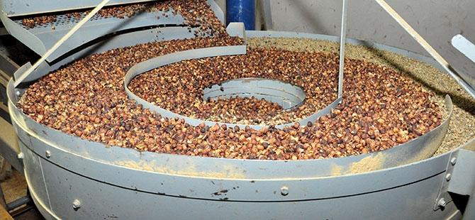 Yemen'de Ramazan öncesi kahve telaşı 8