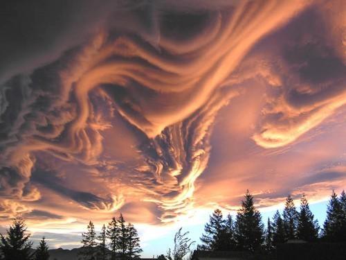En tuhaf görünümlü bulutlar 37