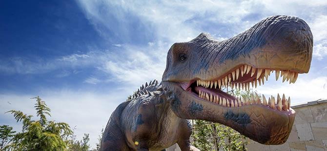Bozkırın ortasında dinozor sesleri 29