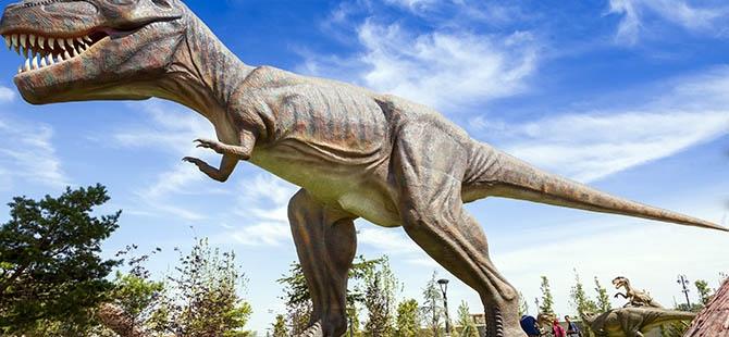 Bozkırın ortasında dinozor sesleri 34