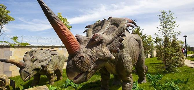 Bozkırın ortasında dinozor sesleri 37