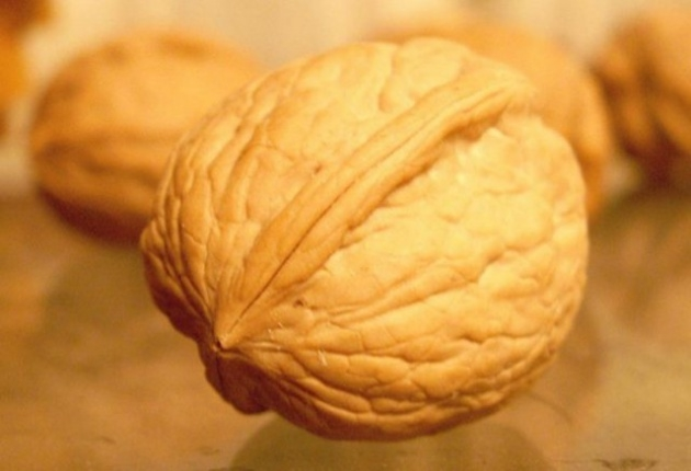 Kanserden Koruyan Yiyecekler 8
