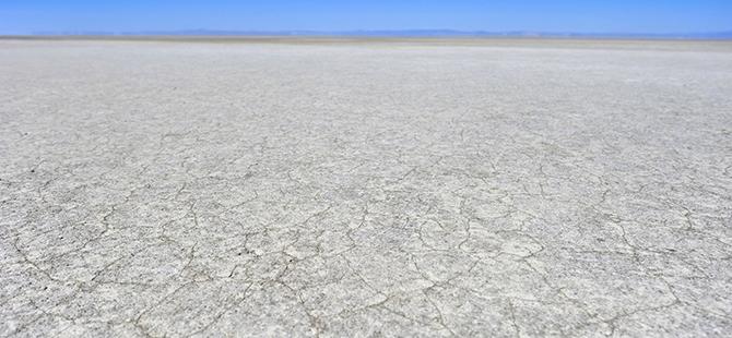 Tuz Gölü flamingo mezarlığına dönüyor 11