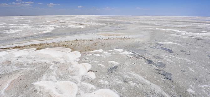 Tuz Gölü flamingo mezarlığına dönüyor 12