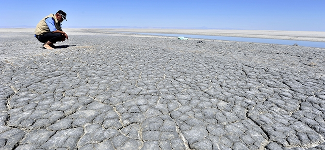 Tuz Gölü flamingo mezarlığına dönüyor 3