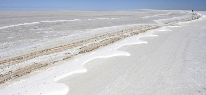 Tuz Gölü flamingo mezarlığına dönüyor 30