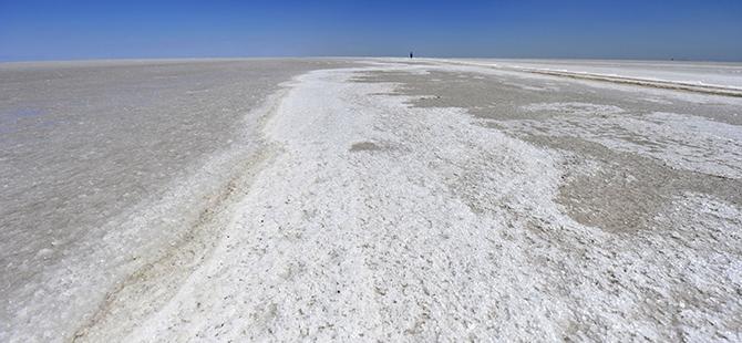 Tuz Gölü flamingo mezarlığına dönüyor 32
