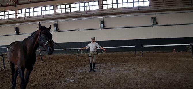TSK'nın atları nerede yetişiyor? 10