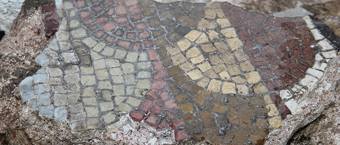 Tarihi mozaikler definecilerin tahribatıyla bulundu 13