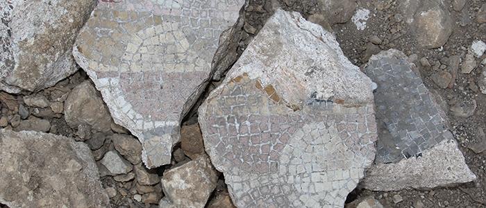 Tarihi mozaikler definecilerin tahribatıyla bulundu 8