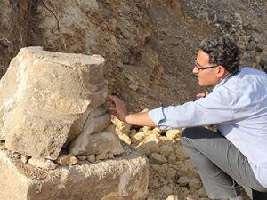 Tarihi mozaikler definecilerin tahribatıyla bulundu