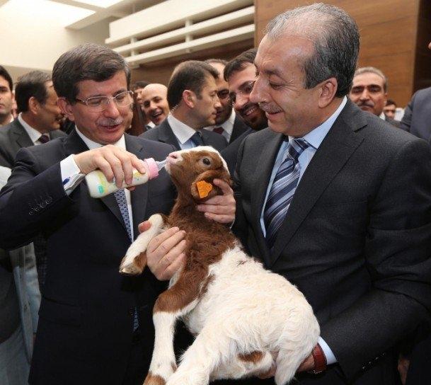 Fotoğraflarla dünden bugüne Ahmet Davutoğlu 119