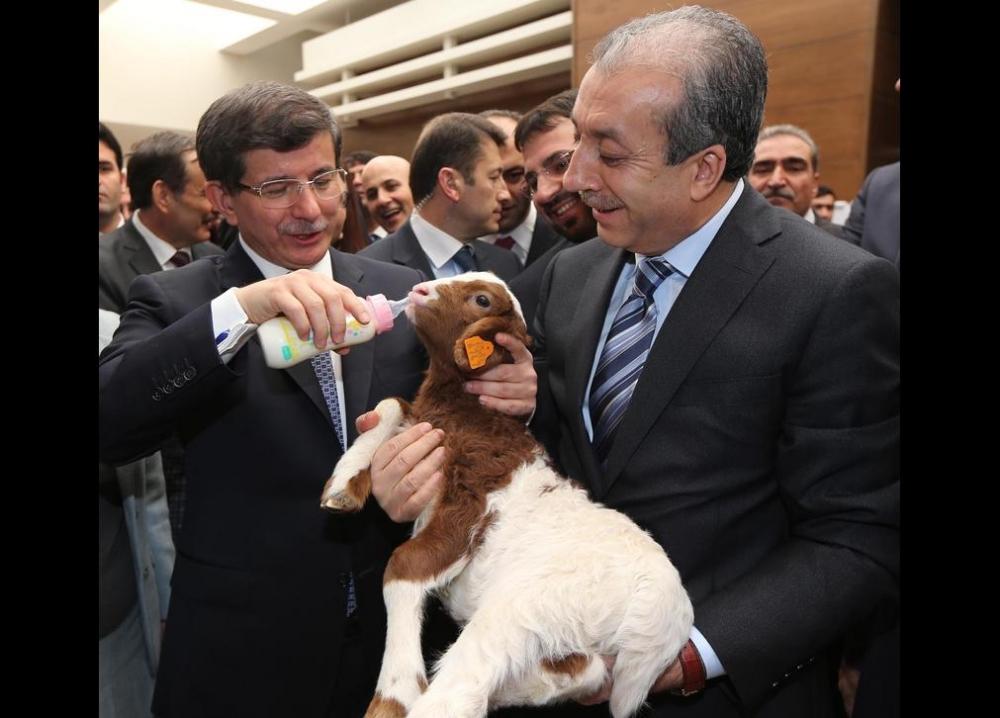 Davutoğlu'nun en ilginç fotoğrafları 30