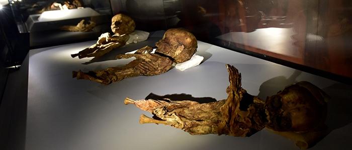 Anadolu'nun mumyaları 1