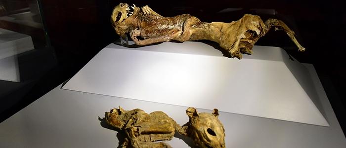 Anadolu'nun mumyaları 14