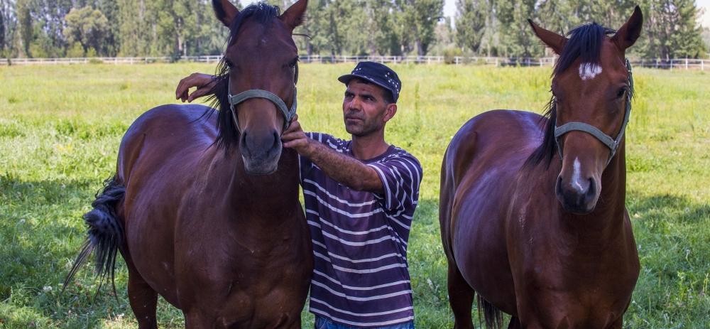 Ereğli'nin ayrık otu, yarış atlarını koşturuyor 3