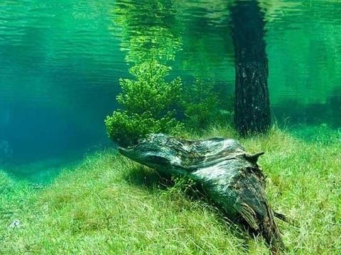 Her sene sulara gömülüyor 11