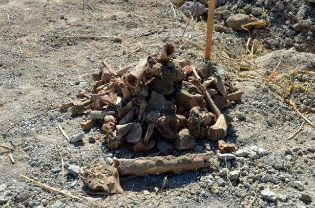Gelibolu'da yeni bir şehitlik bulundu 14
