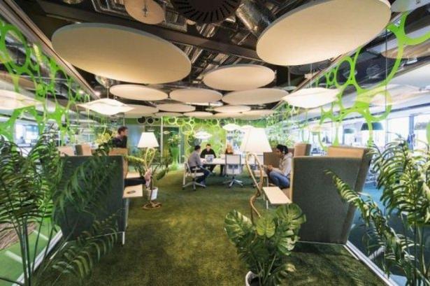 Google'ın sıradışı ofisi 30
