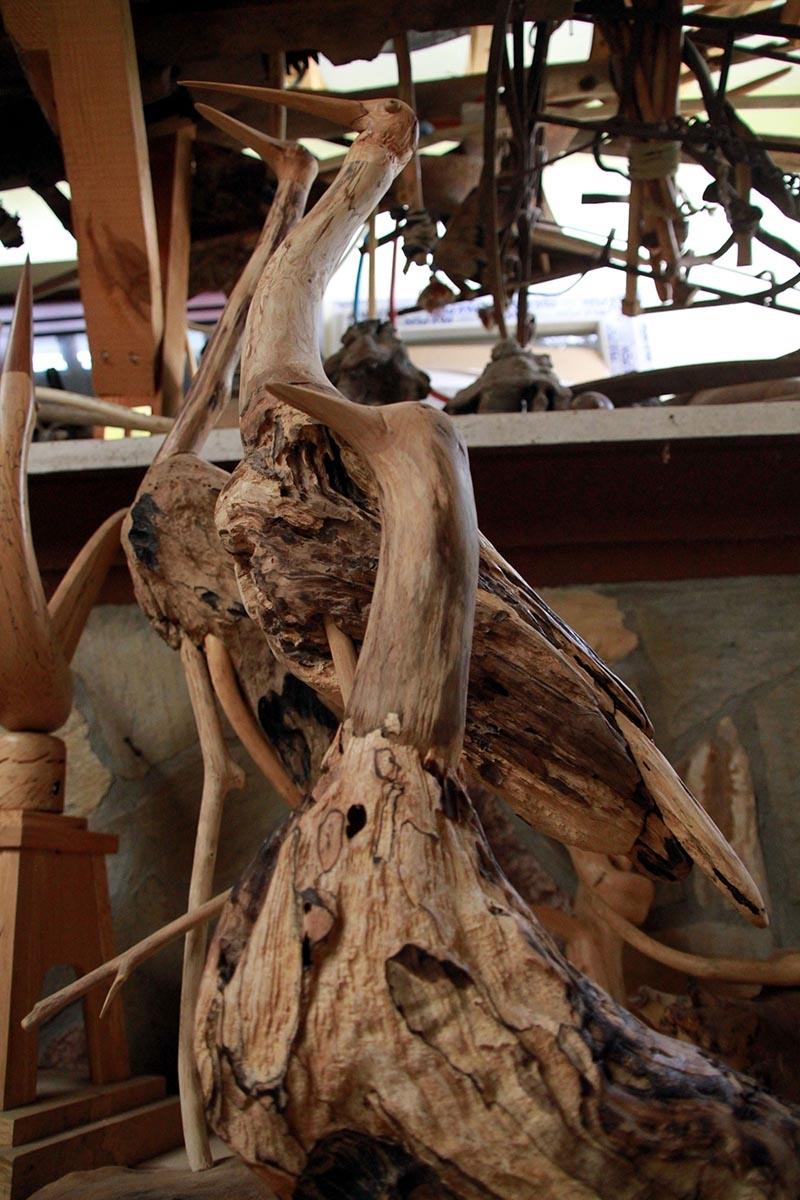 Kurumuş ağaç köklerine şekil veriyor 3