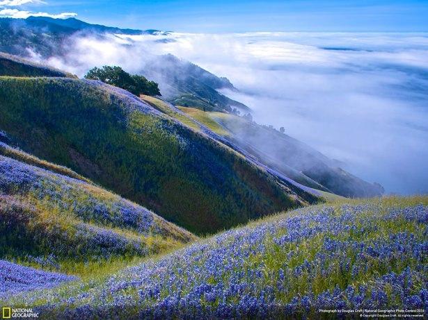 NG'den en iyi doğa fotoğrafları 12