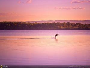 NG'den en iyi doğa fotoğrafları