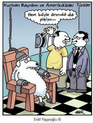Birbirinden komik kurban karikatürleri 15