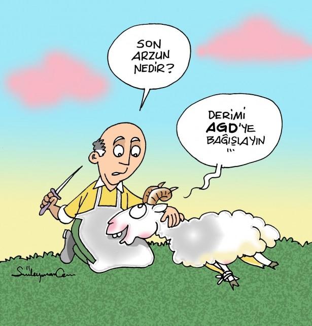 Birbirinden komik kurban karikatürleri 16