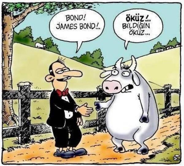 Birbirinden komik kurban karikatürleri 17